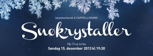 Snøkrystaller_FB_714x264-2