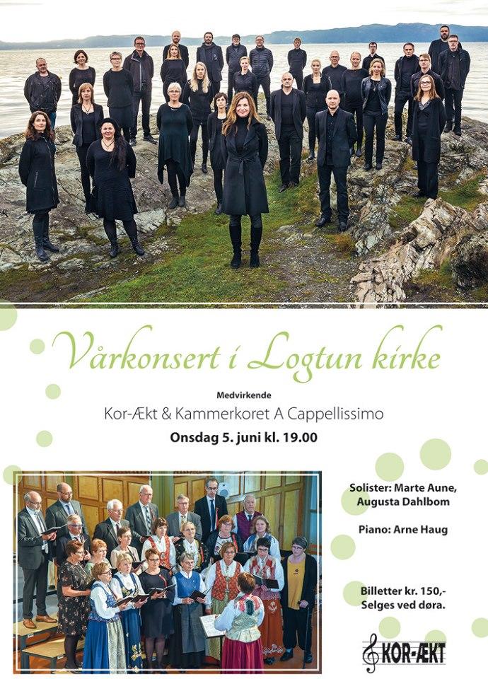 ACapp_korÆkt_Logtun20190605_plakat